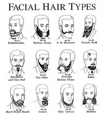 Utilidade p blica mypreview - Clases de barbas ...